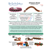 INSTRUCTIONS - Elfweave Braid - left hand - PDF, INS-ELFBRAID-L