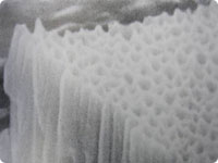 microscopic surface of anodized aluminum