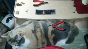 red pliers on a cat with a chainmaille project in the background