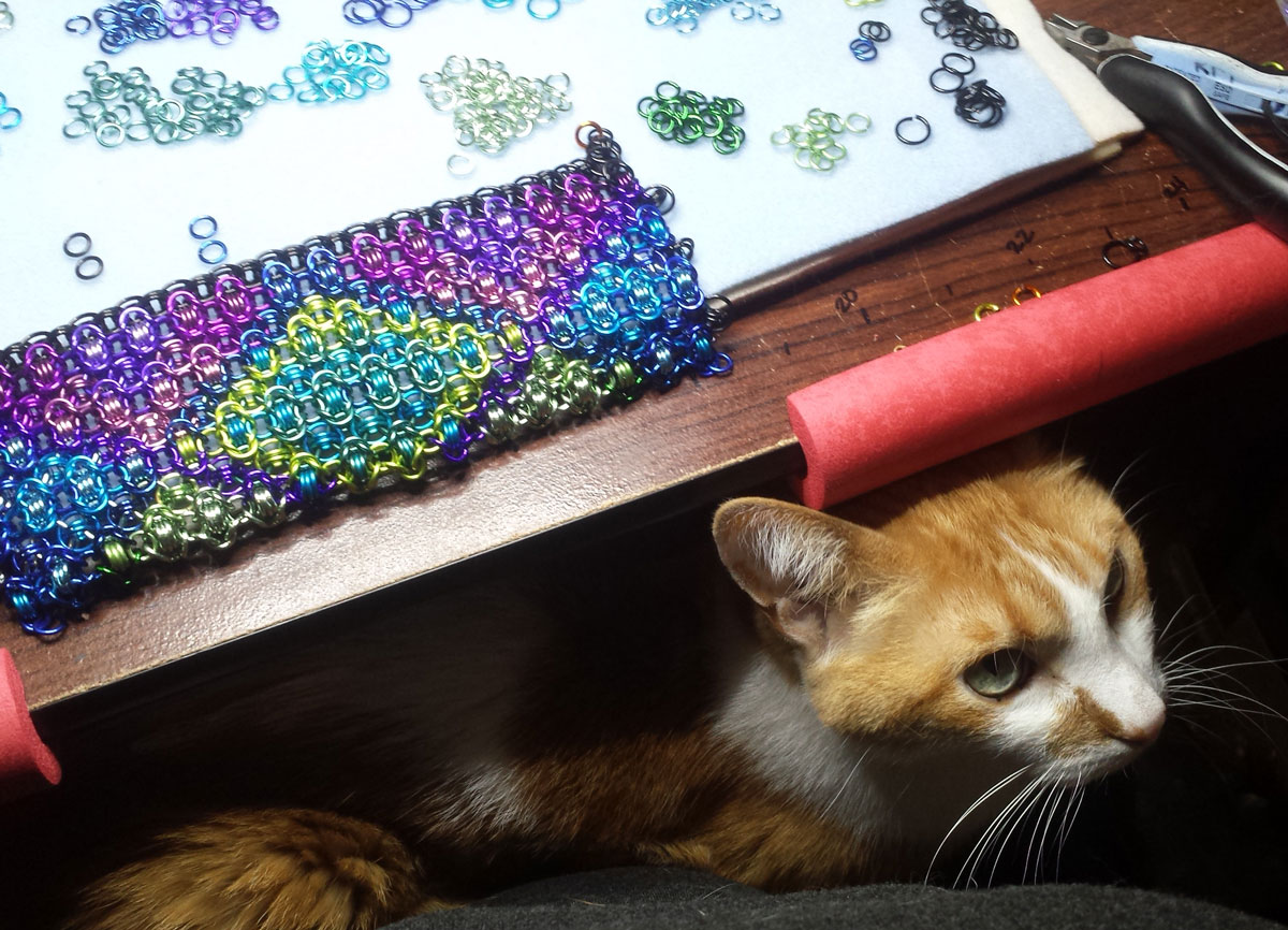 cat-supervisor