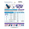 INSTRUCTIONS - Hepatica Bracelet - right hand - PDF, INS-HEPAT-R